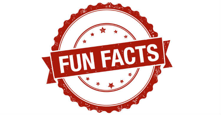10 любопытных фактов о лотерее