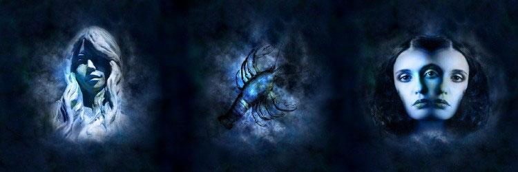 Девы, Раки и Близнецы самые удачные знаки зодиака